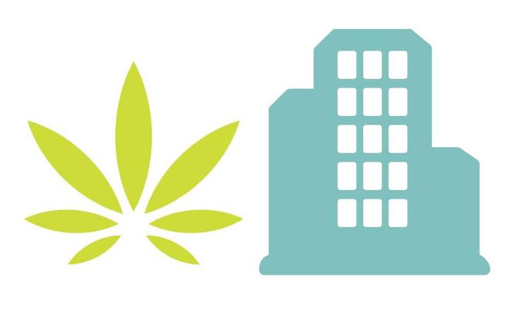 Logo laws on marijuana in retirement homes in Quebec